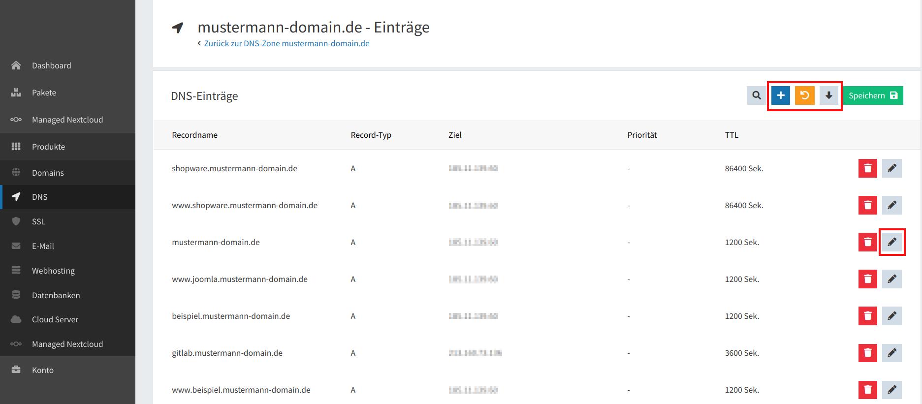 DNS-Einträge bearbeiten 03