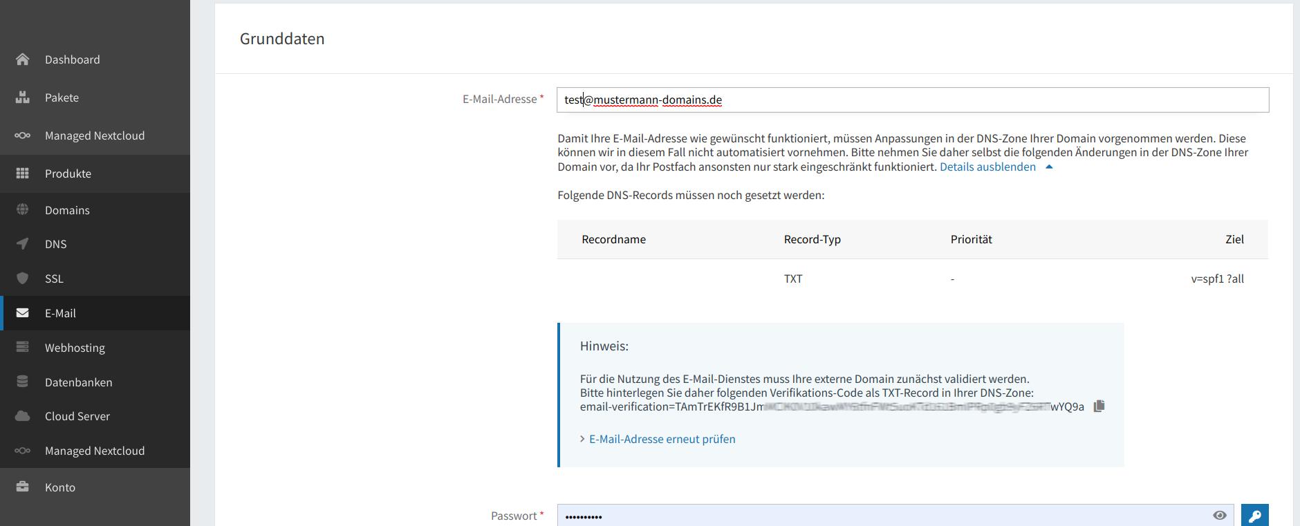 Domain-Verifikation
